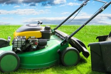 7 Best Oil for Push Lawn Mower [Top Picks & Reviews]